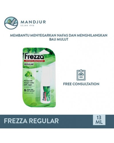 Frezza Antiseptic Mouthspray Regular 13mL