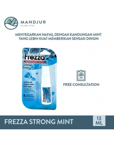 Frezza Antiseptic Mouthspray Strong Mint 13mL