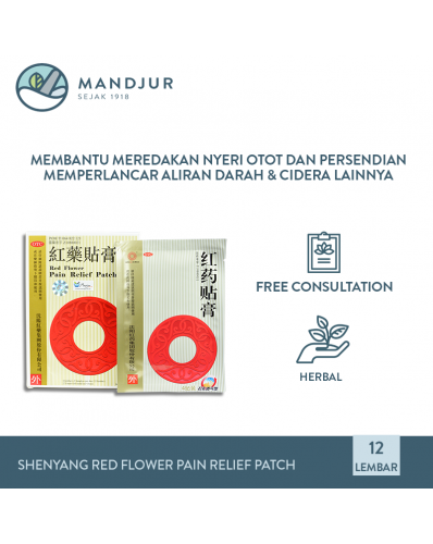 Shenyang Red Flower Pain Relief Patch